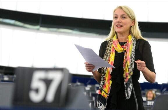 3 Fragen zum Brexit: Evelyn Regner