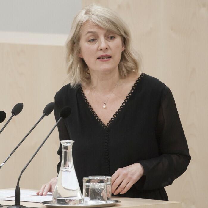 Evelyn Regner am Rednerpult des Nationalrates